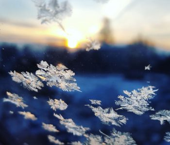 Vintern – från vilken sida av fönstret?