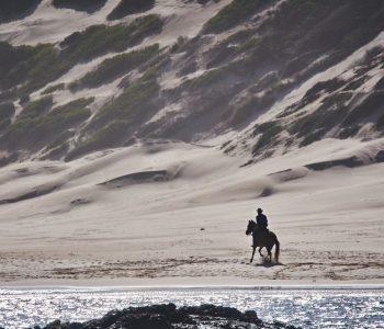 Lyxen i att få vara ensam på hästrygg